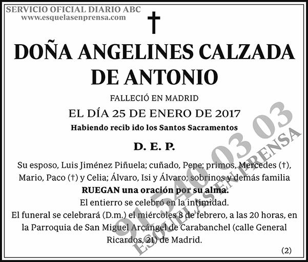 Angelines Calzada de Antonio